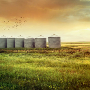 Prairie grain silos in late summer